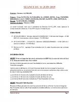 SEANCE DU 11 JUIN 2019 COMPTE RENDU